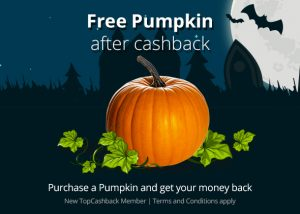 pumpkin-landingpage